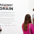 Against the Grain - Installation view, ISANG14 August 2013 (photo: C.Beyer Copyright Iziko Museums)