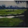 British Guiana coastal landscape (Still), 2013.