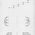 Primary Derivative, 1974