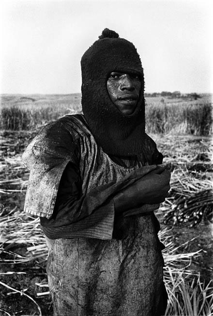 A sugar cane cutter in the sugar farms of KwaZulu Natal, iNyoni, 1986. Artist's collection (Photo: C Nunn)