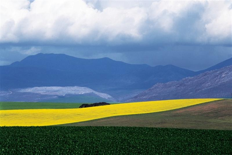 Landscape near Caledon, 1996. Photograph, dimensions variable. (Photo: G Hallett)
