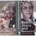 Between Joyce and remembrance