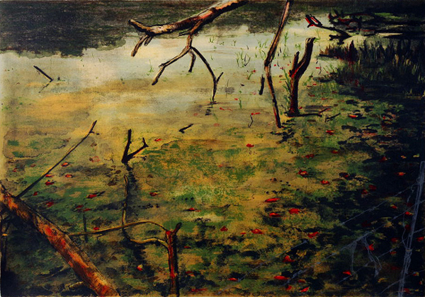Kim Berman - Red ribbons on a pond I