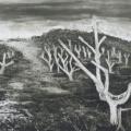 Kim Berman - Alien landscape, White River I