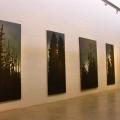 <em>Nordic Forest</em>. Installation view II. KZNSA Gallery, Durban