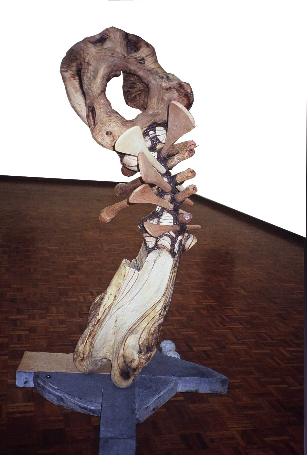 Mambakwedza Mutasa - Instrument of the Creator