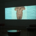 Sonya Rademeyer - Swimming me [installation view]