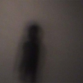 Sonya Rademeyer - formula of being seen 2011