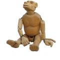 Baboon, c. 2008