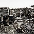 Velile Soha - Loneliness of the shacks